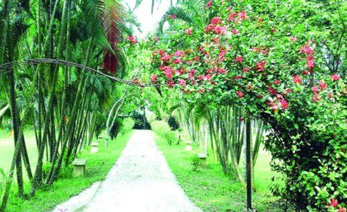 Sea Girl Resort Gazipur